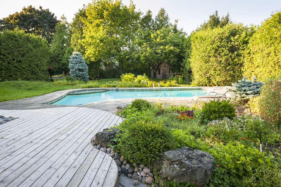 This Pool Builder In Gilbert Helps You Love Your Landscaping