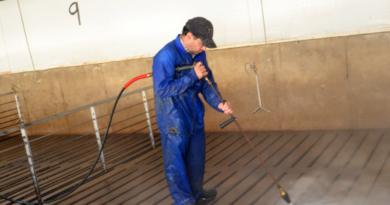 Limpeza e desinfecção: Um manejo que não pode ser subestimado e/ou negligenciado