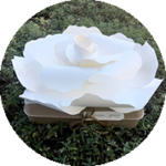 biodegradable-urn_losangelesyachtcharter