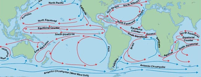 Where do ashes go once they are scattered in the Pacific ocean?