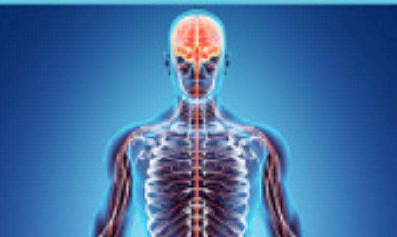 BioPure's Brain Tincture