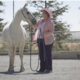 Need Funding for  Senior Horse Moved During Santa Rosa Fires