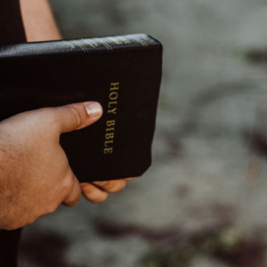 mans' hands holding Holy Bible