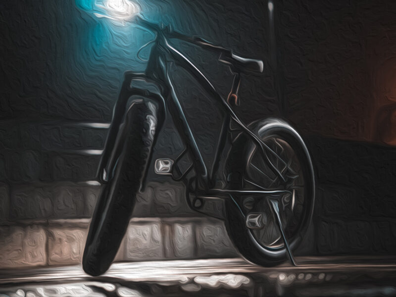 Bikepacking fat bike - Buckfish