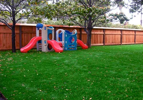 The Case for Artificial Grass