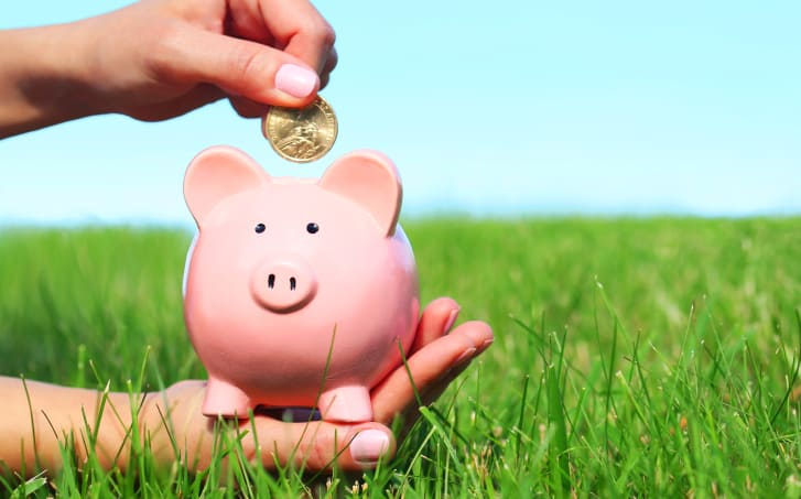 Why Artificial Grass Costs Less