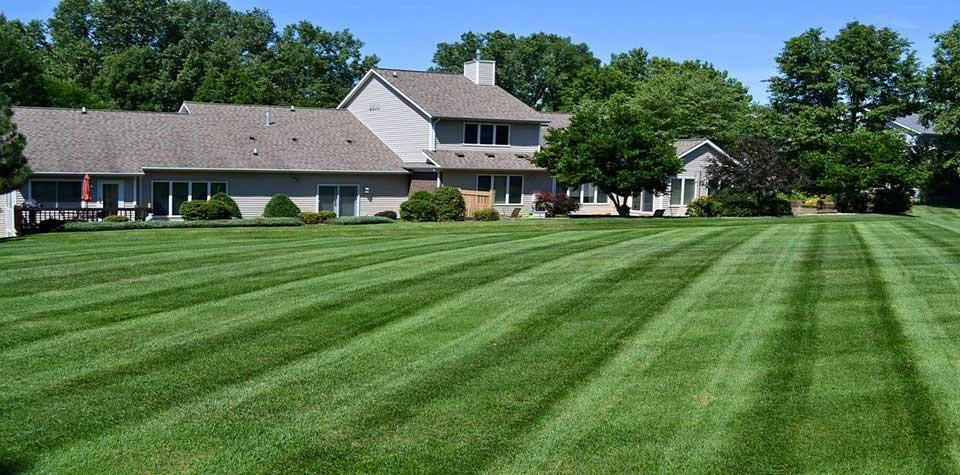 lawn-mowing-churchville-MD