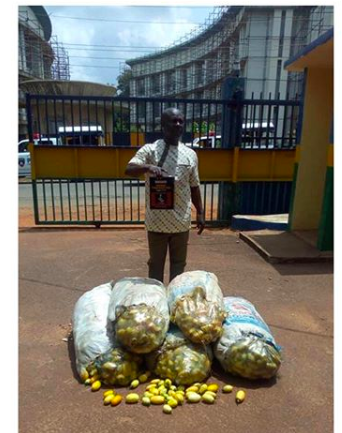 A Male Trader Poisons 143 bags of garden eggs in Enugu