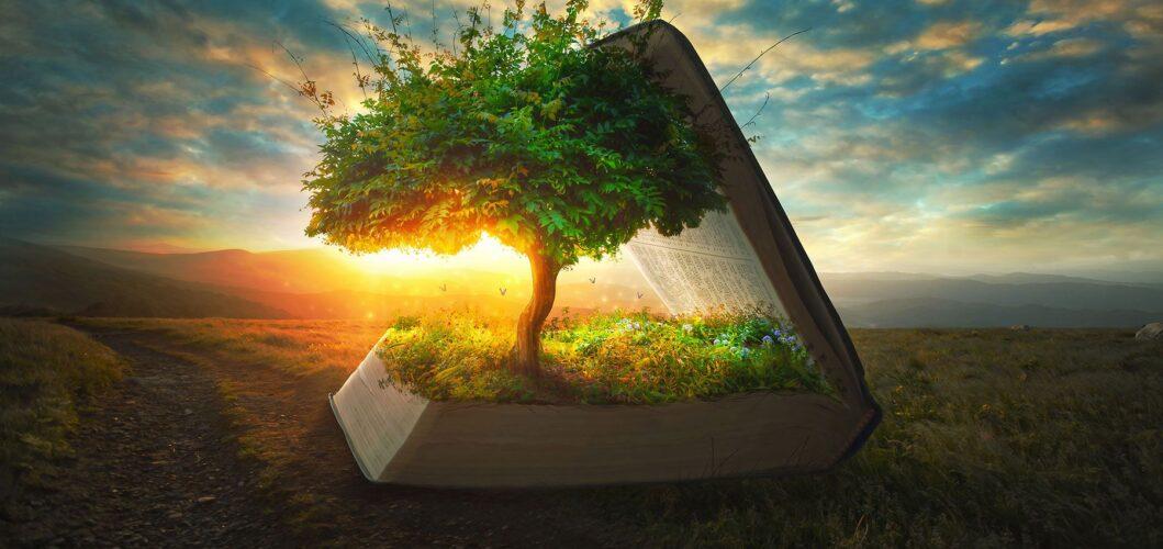 Spiritual growth- sinzuulive