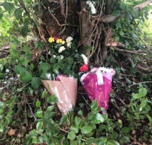 A Drink Driver Murder- sinzuuliveblog