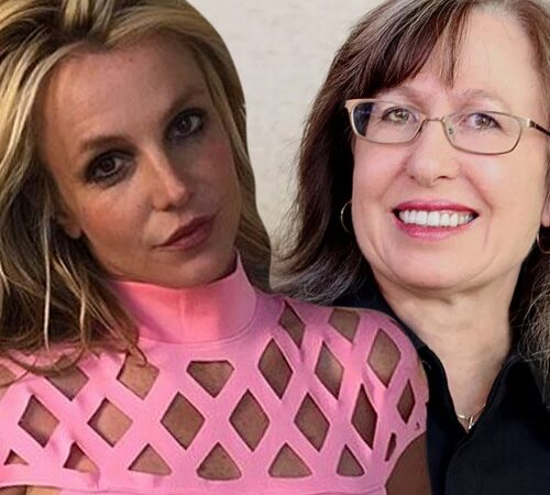 Britney Spears Conservatorship Virtual Courtroom Hearing Was Hit By The Public