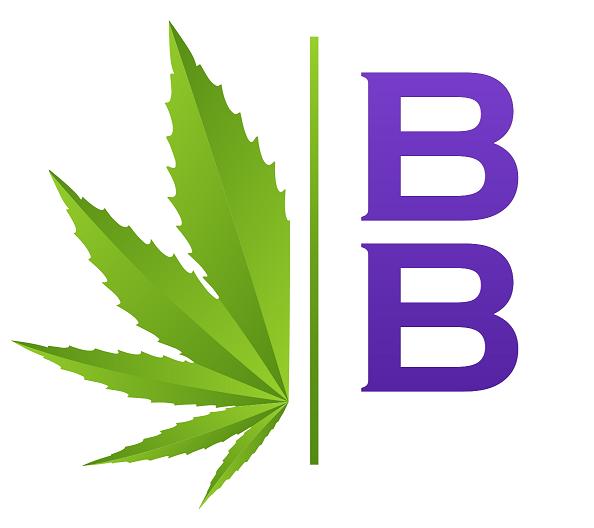 BB-small-white logo