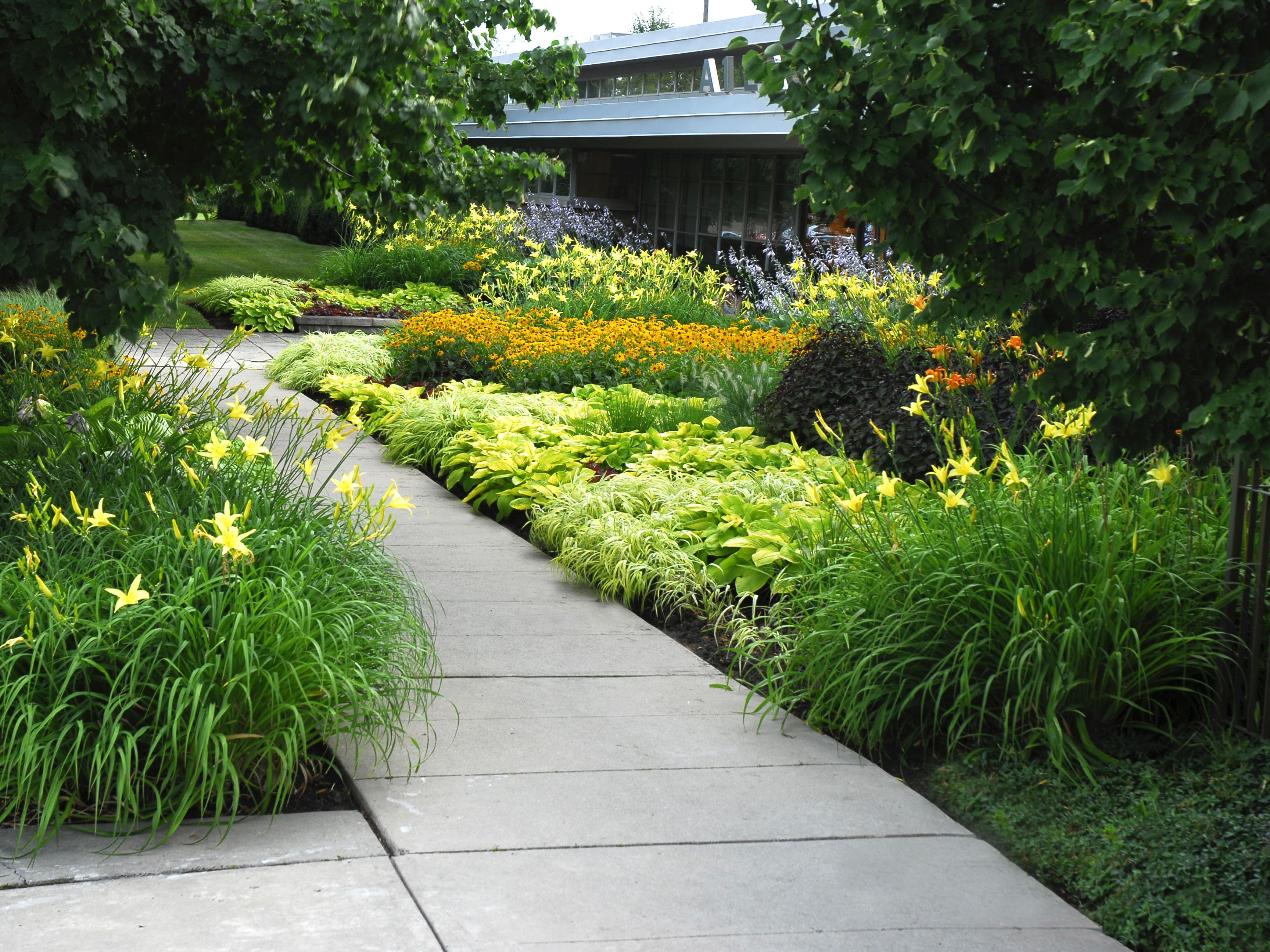 service: planting. concrete path surrounded by brightly coloured and well placed flowers
