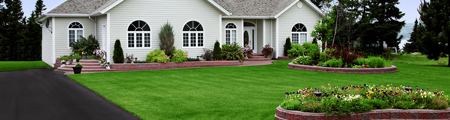 best lawn on the block
