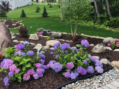 Plantings for New Build - Fenton MI