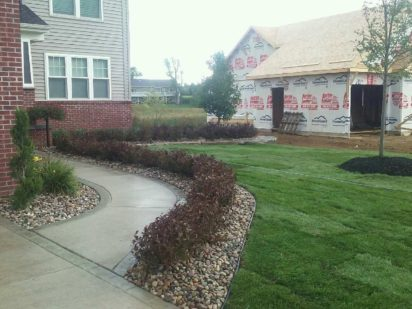 Plantings for New Build - Linden Mi