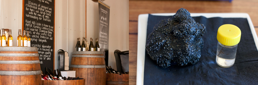 Wine and truffle co 4