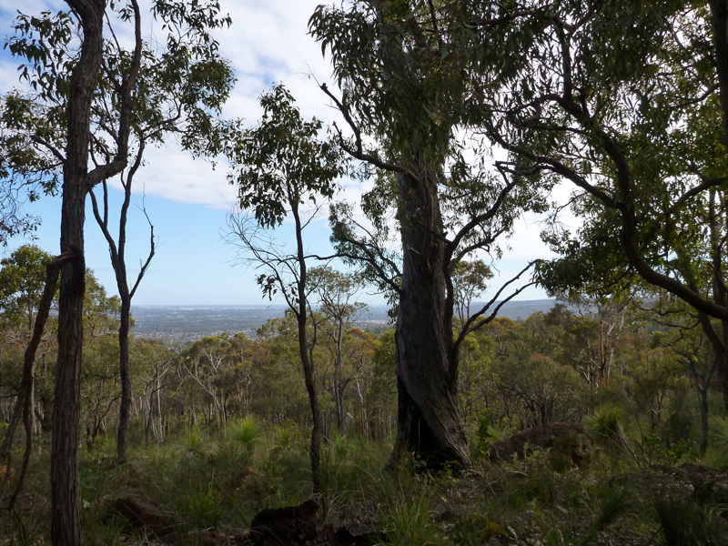 Greenmount-National-Park-lookout-view