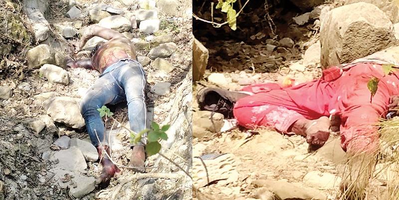 जंगल में कालेज छात्रा व एक युवक के संदिग्ध अवस्था में शव मिलने से अंबक्षेत्र में सनसनी