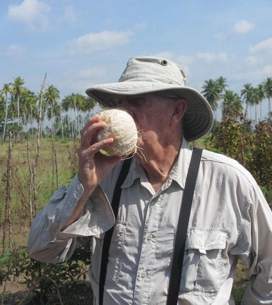 don-coconut-sml