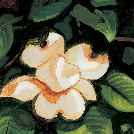 Bon Secours Health System - Dogwood Painting - featured