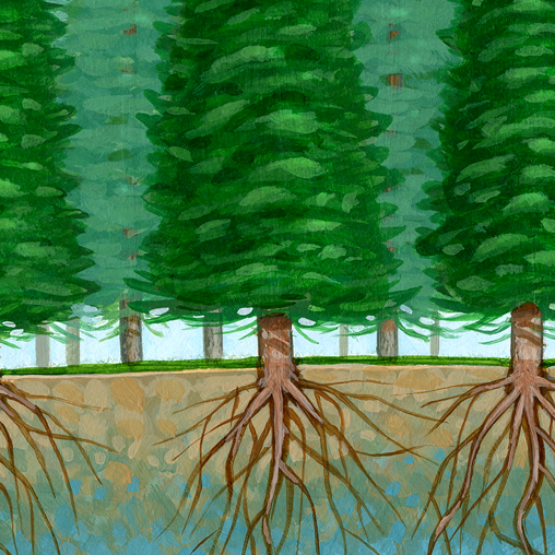 USDA Forest Service - Ground Water Painting - portfolio