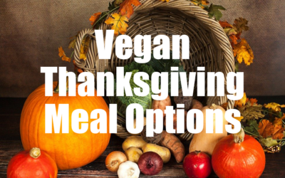 Vegan Thanksgiving Meal Options