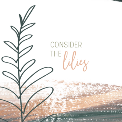 Consider the Lilies: A Simple Ministry of the Home & Soul