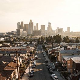 Planting Roots in the City (Los Angeles)