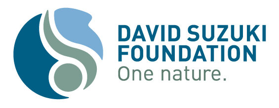 Logo of David Suzuki Foundation