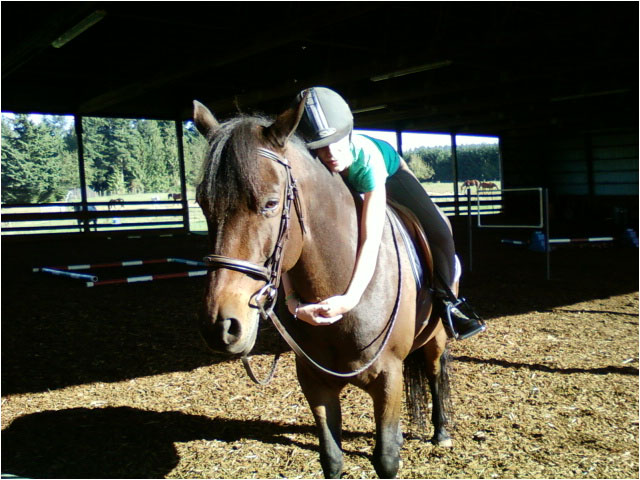 short-acres-farm-horse-riding-lessons-camps-parties-and-events-hockinson-brush-prairie-battle-ground-woodland-ridgefield-orchards-and-vancouver-washington-contact-us
