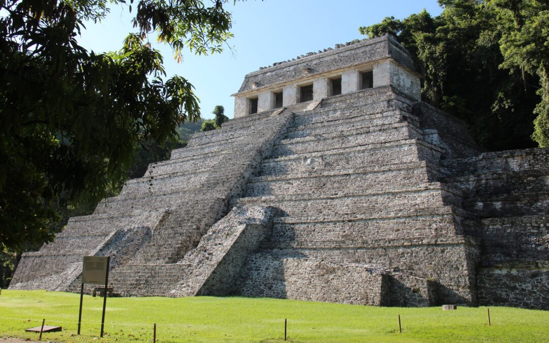 The Long Road to Palenque