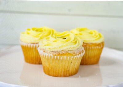 Lemon Blueberry Cupcake