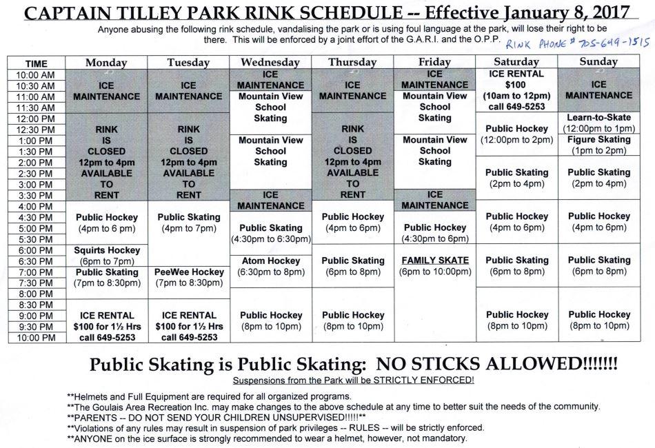 Rink Schedule 2017
