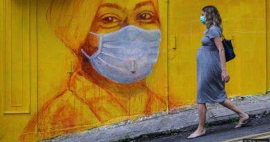 وائرس کرہ ارض پر انسانی اور دیگر زندگیوں کی بقا میں کیا کردار ادا کرتے ہیں؟