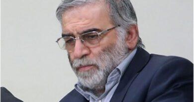 محسن فخری زادہ: ایرانی جوہری سائنسدان کے قتل کے پیچھے کیا وجوہات ہو سکتی ہیں؟