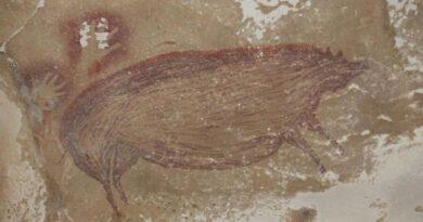انڈونیشیا: ساڑھے 45 ہزار سال قبل غار میں بنائی گئی قدیم ترین تصویر دریافت