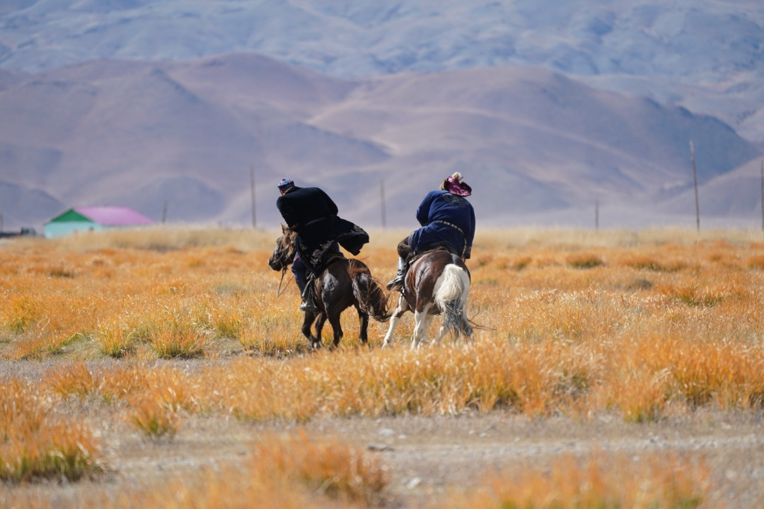 trans Mongolia_(15)