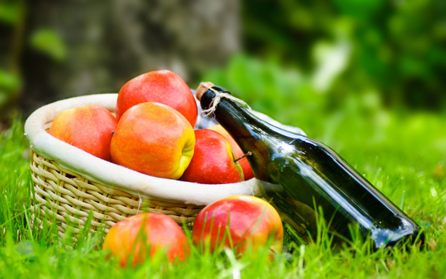 Free Wine Tasting at Relics Antique Mall Mt Vernon during Apple Butter Makin' Days