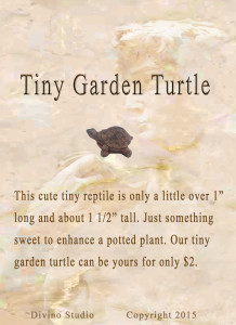 tiny garden turtle set4