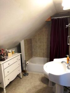 French Lavender bathroom