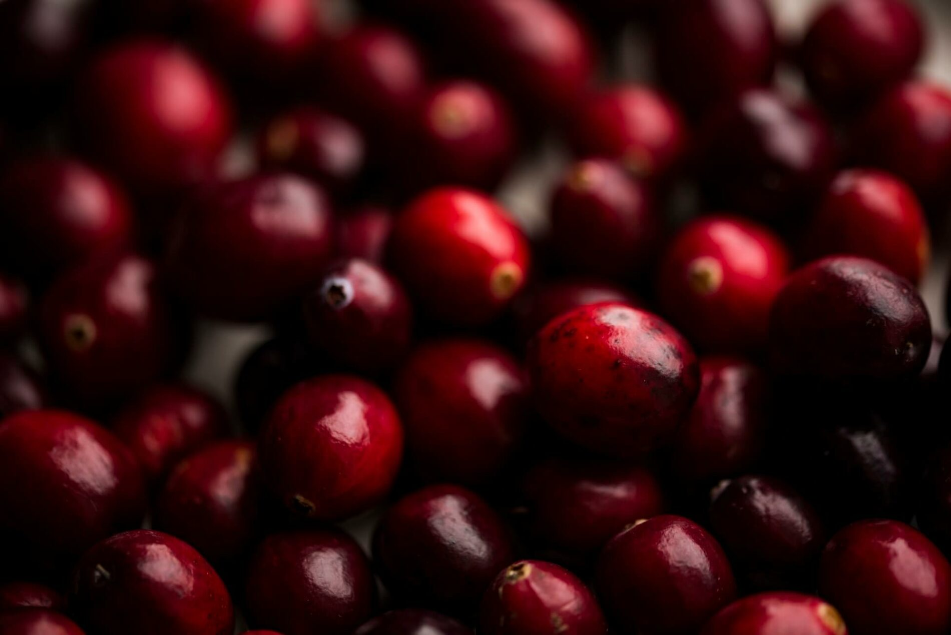 Cranberries: How Can You Avoid Acid Erosion This Holiday Season?