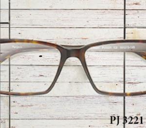 PJ 3221_C2