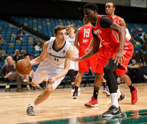 Reno Bighorn Guard DAVID STOCKTON