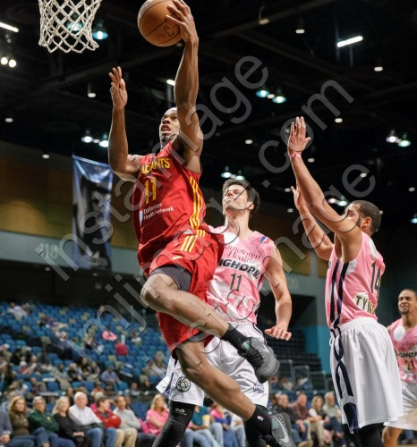 Fort Wayne Mad Ant Forward CJ FAIR (11)