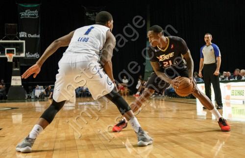 Erie BayHawk Forward ALEX DAVIS (21)