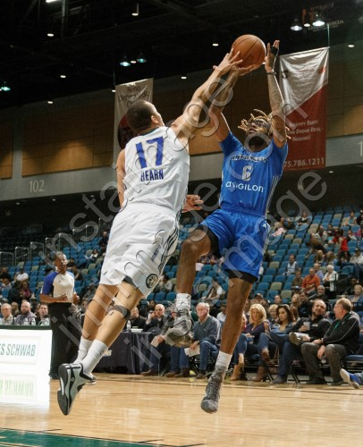 Texas Legends Forward CHRIS DOUGLAS-ROBERTS (6)