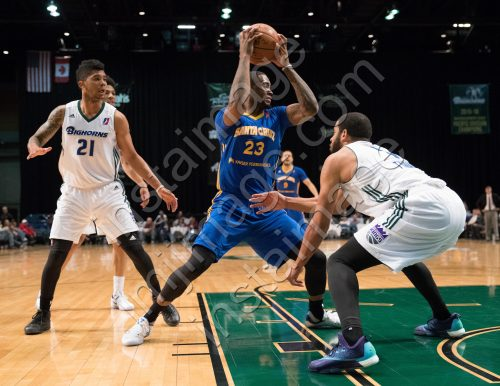Santa Cruz Warrior Forward ELGIN COOK (23)