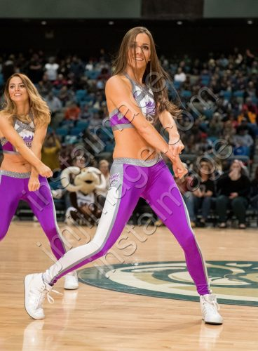 The Sacramento Kings Dancers