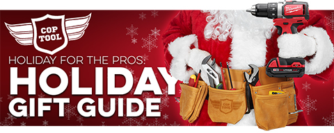 Holiday for the pros 2017